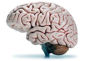 Все об эпилептической болезни или эпилепсии