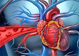 Сердечная недостаточность - побеждаем основные симптомы