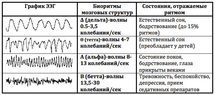 таблица график потенциалов головного мозга
