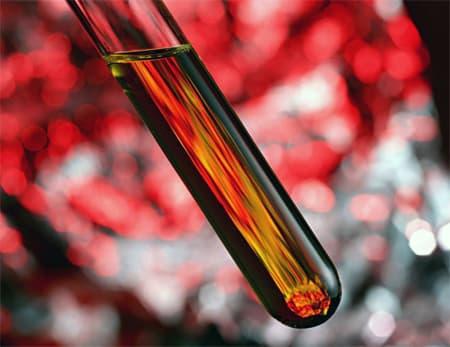 Какую функцию выполняет кровь? Полный перечь функций