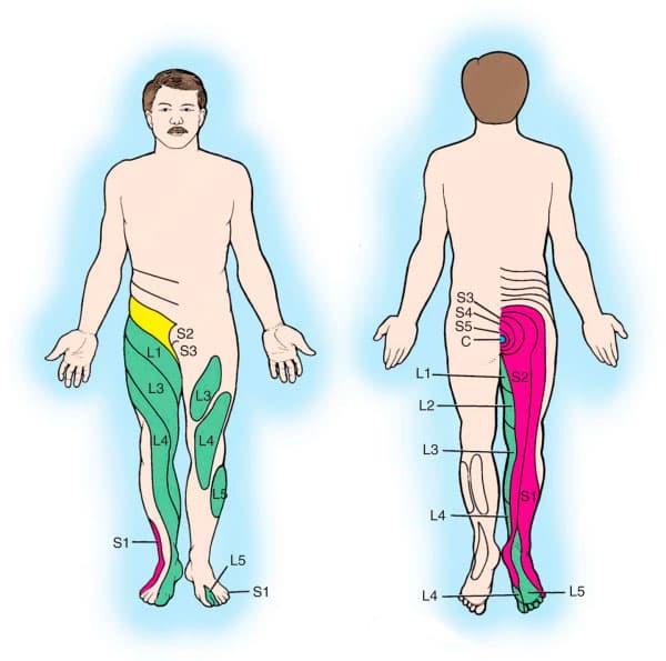Боли слева внизу живота у женщин отдают в поясницу и ногу