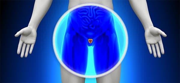 Способы применения и дозы лекарственных капель от простатита