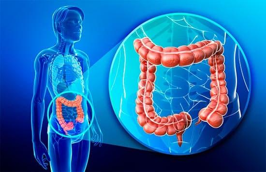 Что такое синдром раздраженного кишечника? Диагностика и лечение болезни