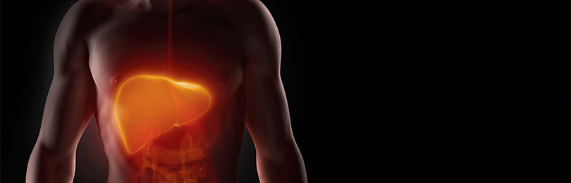 Фиброз печени: чем опасно заболевание?