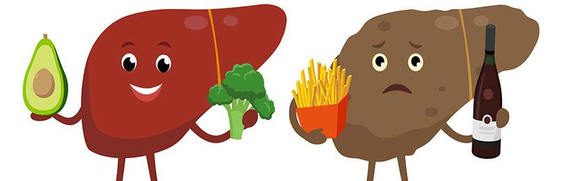 Что вызывает жировую дегенерацию печени?