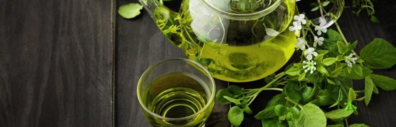 Чем полезен и вреден зеленый чай для женщин и мужчин