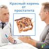 Лечение простатита и аденомы простаты красным корнем – описание свойств, рецепты