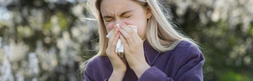 Сезонная аллергия: несколько фактов, о которых всегда говорят врачи