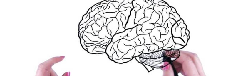 ТЕСТ: определяем работу Вашего мозга. Оригинальный и уникальный тест