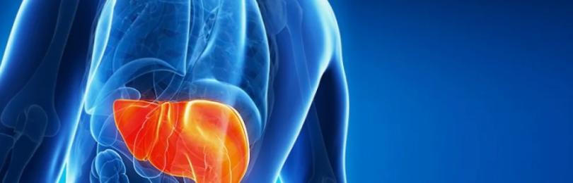 Лечение гепатита печени: симптомы заболевания, диетическое питание