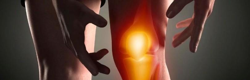 Боль в суставах: как избавиться, особенности применения крема «Акулий жир»