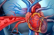 Сердечная недостаточность — побеждаем основные симптомы