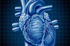 Наджелудочковая экстрасистолия — к психологу или кардиологу?