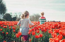 Аллергия у ребенка: что делать? Разновидности аллергий, признаки, профилактика