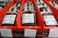 Кровь человека и формула подсчета её объема