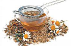 Эффективные рецепты настоек для лечения простатита