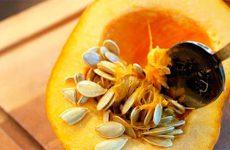 Самые эффективные способы применения тыквенных семечек при простатите